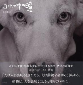 news_20141019
